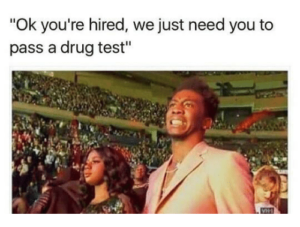 10 Things You Need to Know Before Taking Any Drug Test for Employment