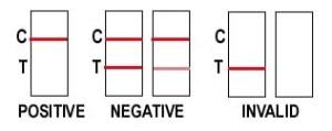 12 Panel Drug Test Cup | ECO II Urine Drug Test Cup w: K2 Spice straight detox THC DRUG TEST | Single Panel MARIJUANA Drug Test