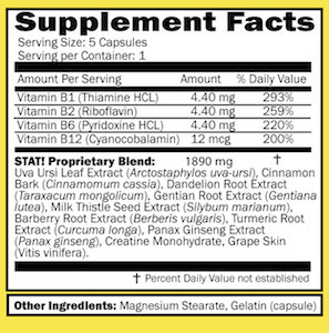 Stat Flush Detox Extra Strength Pills PANEL 2 STRAIGHT DETOX-min